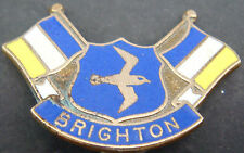 BRIGHTON & HOVE ALBION Rare vintage Badge Make P&G SPORTS Brooch pin 34mm x 24mm