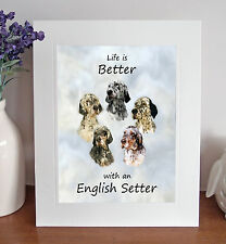 "English Setter 'Life is Better' 10"" x 8"" Mounted Print Picture Image Fun Gift"