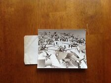 WWII Air Planes Navy photo aircraft carrier Dive Bombers Avenger Torpedo Ship