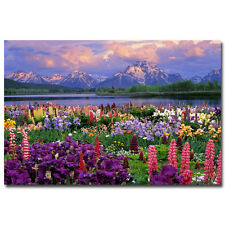 Grand Teton National Park Spring Flowers Nature Art Silk Wall Poster 24x36 inch
