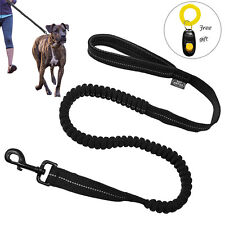 Didog Absorbing Dog Leash Reflective Stitching Bungee Dog Lead with Free Clicker