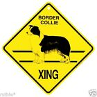 Border Collie Dog Crossing Xing Sign New