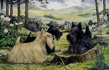 "SCOTTISH TERRIER SCOTTIE DOG ART LIMITED EDITION PRINT - ""At Glamis Castle"""