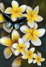 QUALITY CANVAS ART PRINT * FRANGIPANI'S & BUTTERFLY