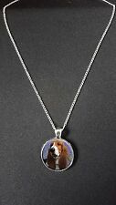 """Basset Hound Pendant On 18"""" Silver Plated Fine Metal Chain Necklace Gift N453"""