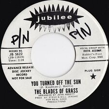 Blades Of Grass ORIG US Promo 45 You turned of the sun EX '68 Sunshine Pop
