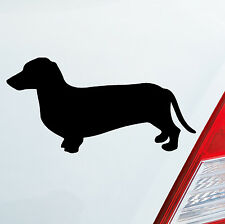 Autocollant TECKEL Chien Chasse Stickers DUB OEM FAIBLE JDM 097