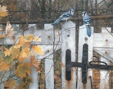 Carl Brenders Talk ON THE OLD FENCE Giclee Canvas, Blue Jays, AP #5/40