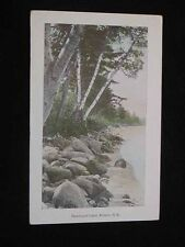 Antique POSTCARD Newfound Lake, BRISTOL, NH. Shoreline Scene, c1915
