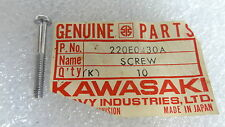 Kawasaki NOS NEW  220E0430A Pan Head Screw 4x30 220E0430 H1 G3 G4 G5 KD KS KM KE