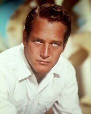 Paul Newman 10x 8 UNSIGNED photo - P802 - SEXY!!!!!