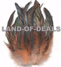 20+ Half Bronze Coque feathers, natural rooster tail feathers iridescent brown