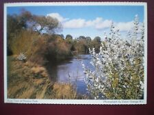 POSTCARD NORTHUMBERLAND PRESTON PARK THE RIVER TEES