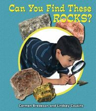 Can You Find These Rocks? (All about Nature)-ExLibrary