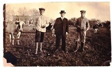 """Immigrant Photo 3 Men & Cows Back is Dated with """"Amerika"""" Dappy Vintage 1915"""