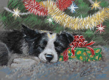 NEW Border Collie Dog, Christmas cards pack of 10 by Paul Doyle. C499X