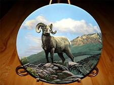 """The Bighorn Sheep"" WILD AND FREE: CANADA'S BIG GAME Paul Krapf Dominion Plate"