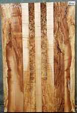 Spalted Curly Maple #5693 Exhibition Grade 5A Bass Guitar 9 PC. Lam Body Blank