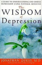 The Wisdom of Depression: A Guide to Understanding and Curing Depression Using N