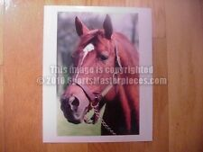 Secretariat 16 X 20 Original Horse Racing Poster/Photo-1973