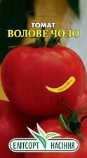 semi di pomodoro dalla Russia/Pomodori Ucraina FRONTE DEL BUE dall' Kyyiv.