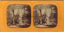 Versailles Trianon Stéréo Diorama Stereoview Tissue Vintage albumine ca 1860