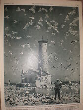 Printed Photo Gull Island by Grant Haist of Rochester New York USA 1960