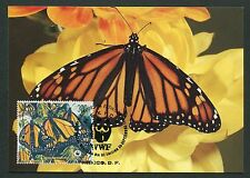 Mexico Mk mariposas monarca monrach Butterfly maximum card mc cm m111