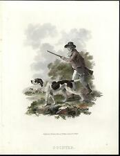 Pointer Hunting Dogs Scouting Surrounding 1803 old engraved hand color print