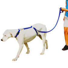 Instant Training Trainer Dog Leash No Pull Dogs Harness Control Leads Anti Pull