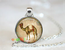 Egyptian Camel photo glass dome Tibet silver Chain Pendant Necklace wholesale