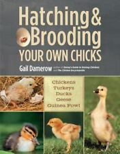 Hatching and Brooding Your Own Chicks : Chickens, Turkeys, Ducks, Geese,...
