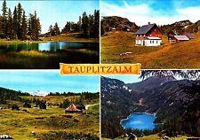 Tauplitzalm   , Ansichtskarte 1995 gelaufen