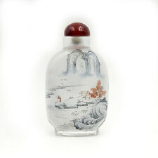 CHINESE INSIDE HAND PAINTED Mountain Lake Birds Person House SNUFF BOTTLE