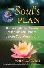 Your Soul's Plan : Discovering the Real Meaning of the Life You Planned...