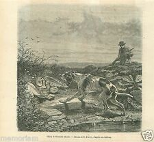 Hunting Tableau Scène de Chasse Chien Chouette Dog Owl GRAVURE OLD PRINT 1862