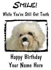 Bolognese Dog Happy Birthday Teeth smile 15  A5 Personalised Greetings card