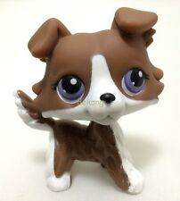 Hasbro Littlest Pet Shop Rare Brown Collie Dog with purple eyes Puzzle Loose LPS