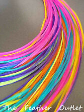 Lot 40 Grizzly Solid Feathers Hair Extensions Multi Colors Bright Real All SOLID