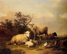 Oil painting sheep with resting lambs and poultry in a landscape with cock lamb