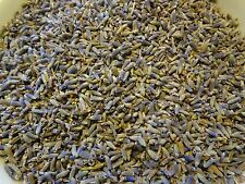 Half pound, 8 OZ, BULK Dried French Lavender Buds, VERY FRAGRANT, FREE Ship