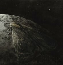 Augrimmer - Moth and the Moon CD 2016 atmospheric black metal Germany