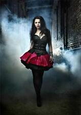 Amy Lee A3 Poster M352