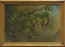 Ca. 1910, California Elderberries Branch Botanical, American School