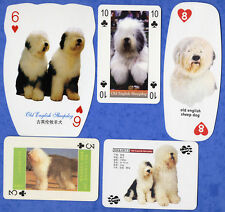 Old English Sheepdog Dog Playing Swap Single Cards Great Gift When framed