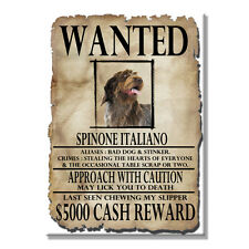 ITALIAN SPINONE Wanted Poster FRIDGE MAGNET No 2 DOG