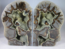 Excellent Quality- Hollow Septarian Nodule Bookend from Utah