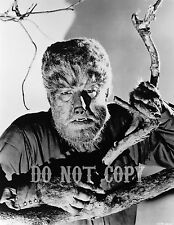 Wolfman #10 8.5 x 11in Glossy Photo Lon Chaney Jr