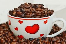 7 Semillas  Árbol del Café - COFFEA ARABICA  - cafeto arábigo - Jardín