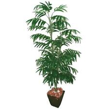 5ft Artificial Phoenix Palm Tree - 612 Leaves - Tropical Ornamental Plant